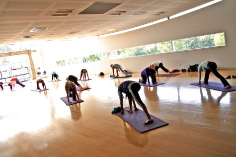 Student pursues yoga career